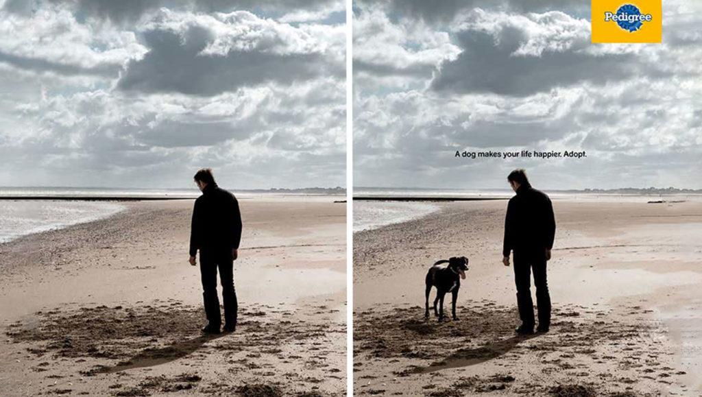 Pedigree focuses on brand awareness with this print magazine ad