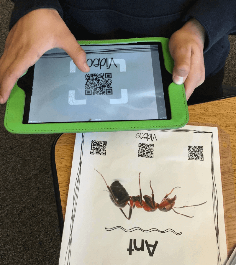 Ant classroom worksheet with a student scaning a Video QR Code with an iPad